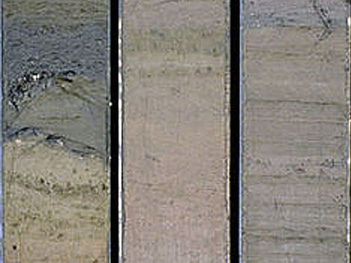 Sediment from lake core